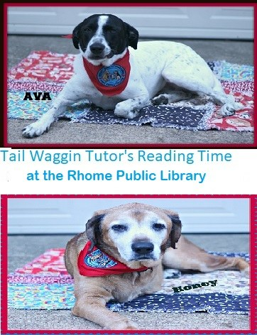 Ava and Honey Tail Waggin Tutors Reading time.jpg